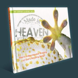 book_made-in-heaven